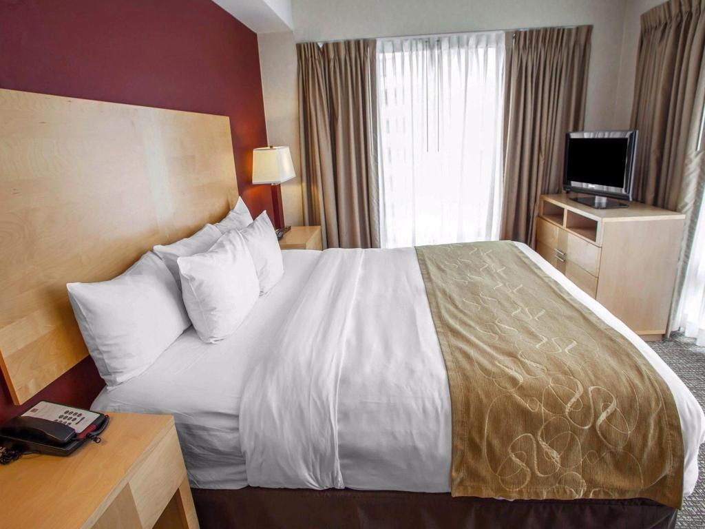 Terrific Comfort Suites Michigan Avenue Official Site Hotels In Chicago Beutiful Home Inspiration Ponolprimenicaraguapropertycom