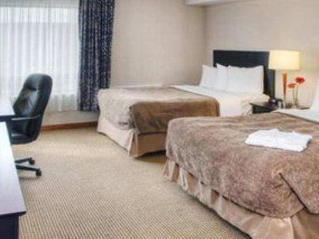 Quality Inn And Suites Montreal East Site Officiel Hotels A Montreal