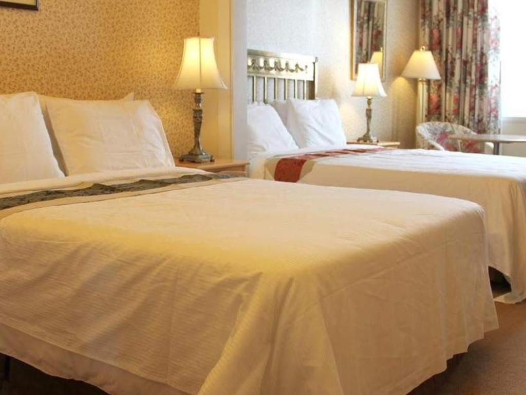 Chambre Double Avec 2 Lits Doubles Hotel Terrasse Dufferin Quebec