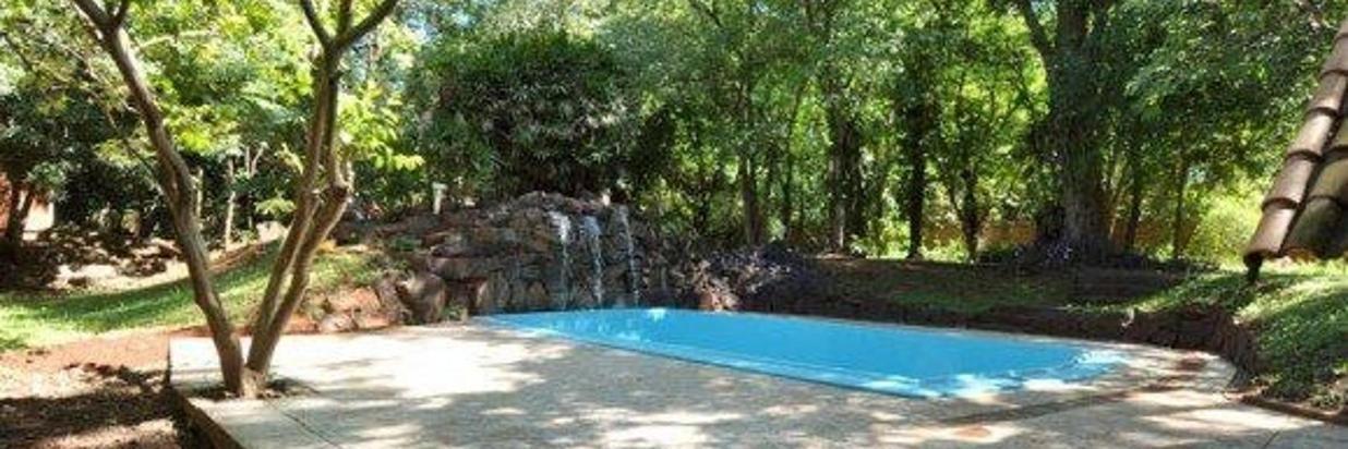 359-piscina-longe-arvores_579_385_90.jpg