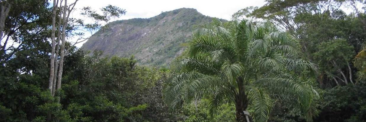 monte-pascoal-vista-centro-de-visitantes1.jpg