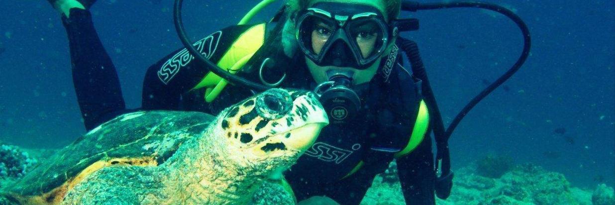 image-activites-diving-ukulhas-1.jpg