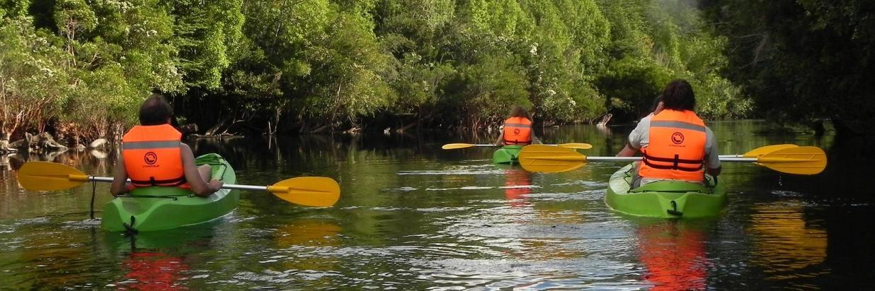 Kayak y Cabalgatas [+]
