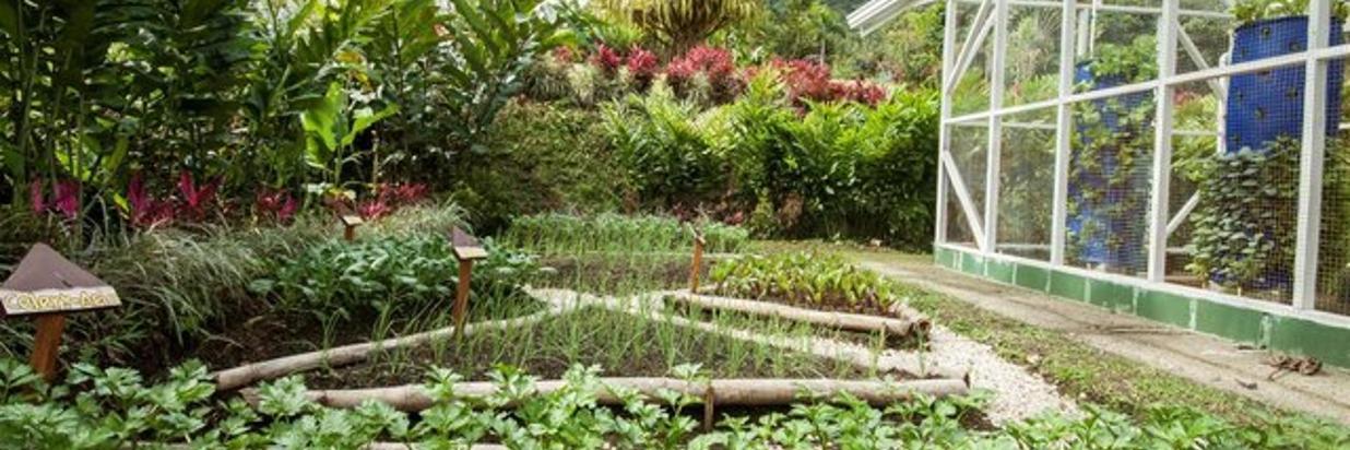 Garden & Farm