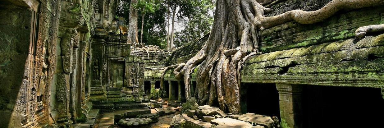 Explore The Ancient City of Angkor