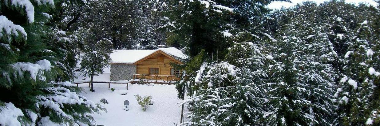 Cabaña La Araucaria