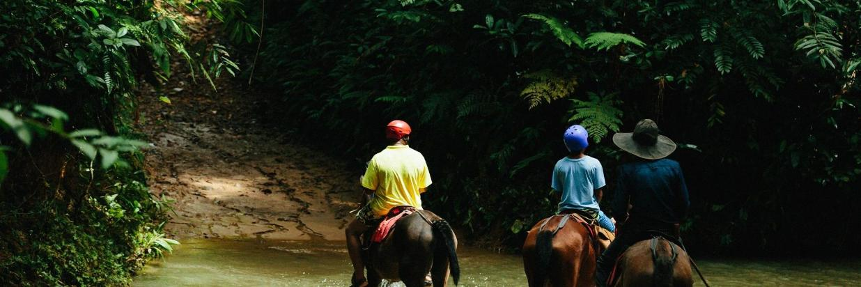 Horseback Riding Waterfall Tour