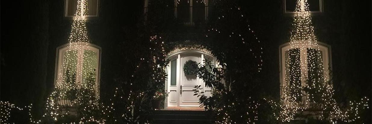 Palo Alto's Christmas Tree Lane
