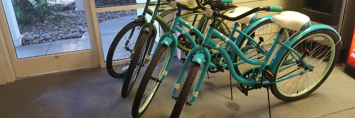 Islander Bike Rentals