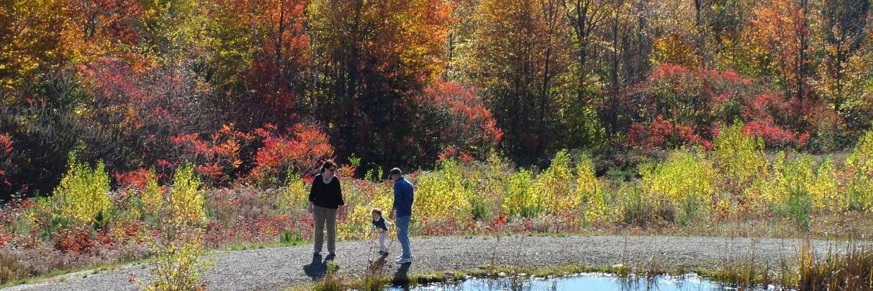 Familia otoño por estanque en Coppertoppe con lago behind.jpg