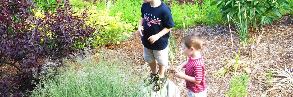 Niños de julio explorando el jardín en Coppertoppe.jpg