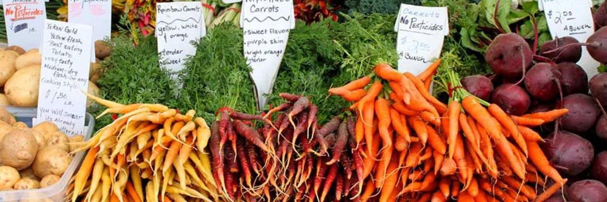 Farmer's Markets, Live Music, & Art