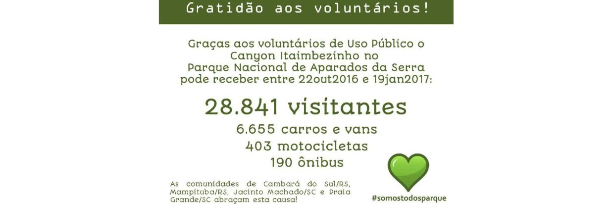 voluntarios11.jpg