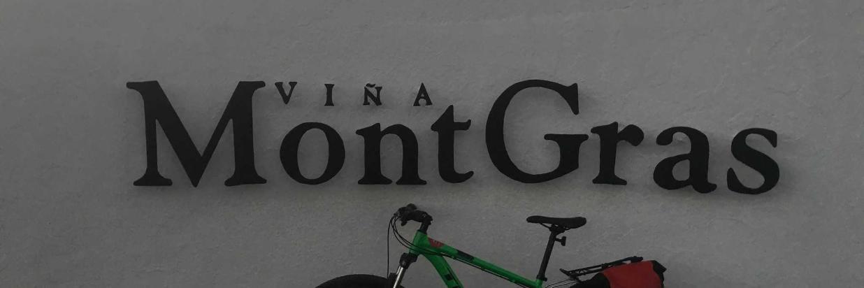 aluguel de bicicleta