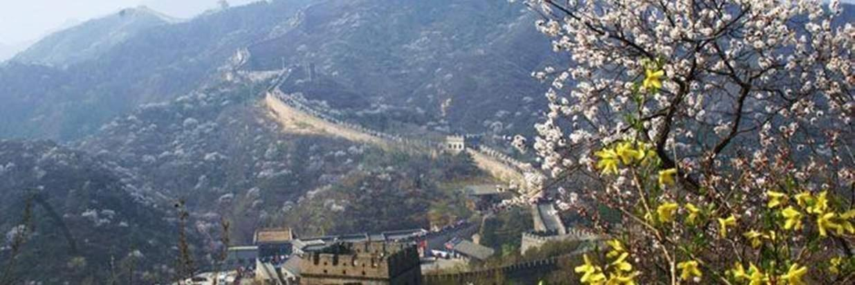 Great Wall at Badaling & Ming Tombs One Day Tour