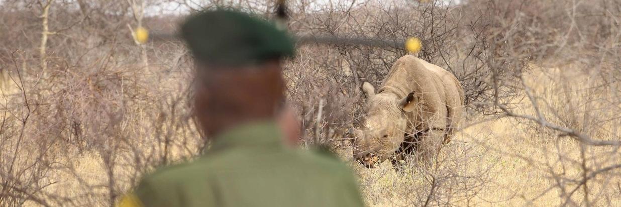 Saruni Rhino Booking Procedures