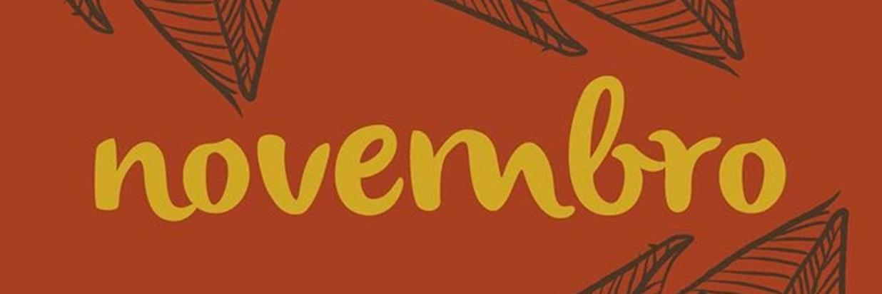 bvl-bannerweb-novembro.jpg