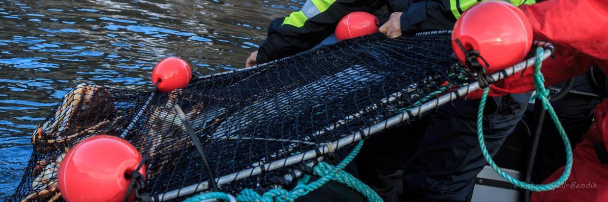 Rafting 16.jpg