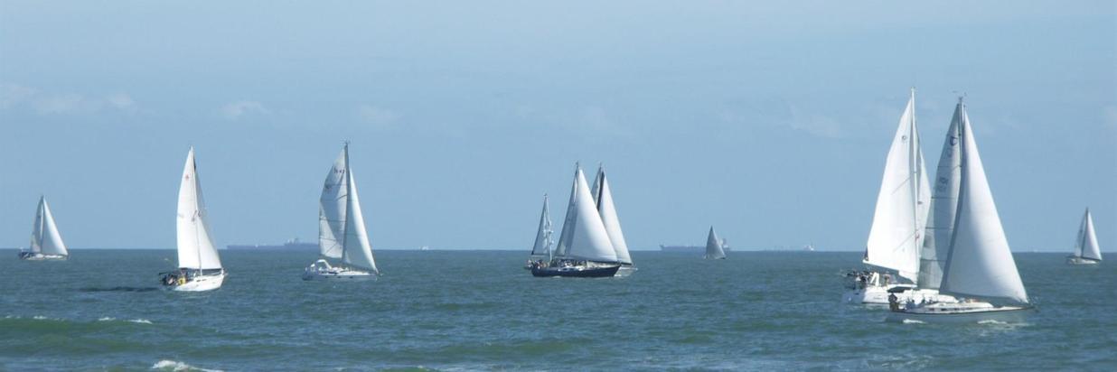 Annual Sailboat Regatta