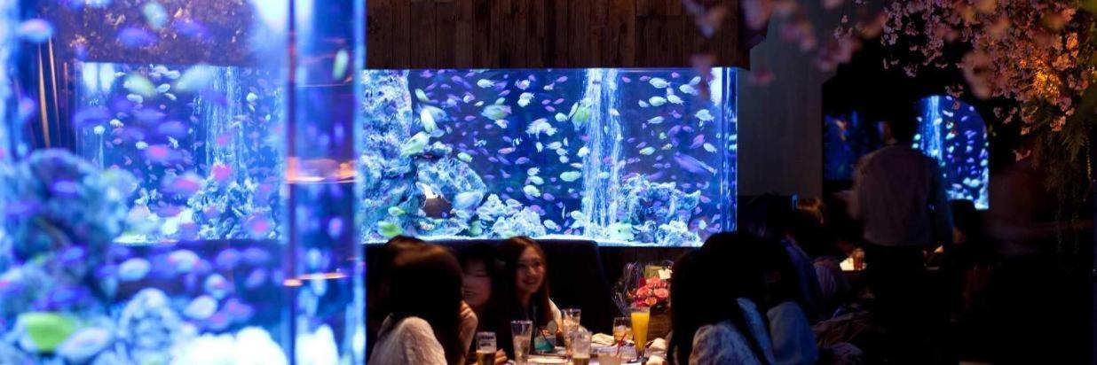 AQUARIUM DINING SHINSAIBASHI LIME