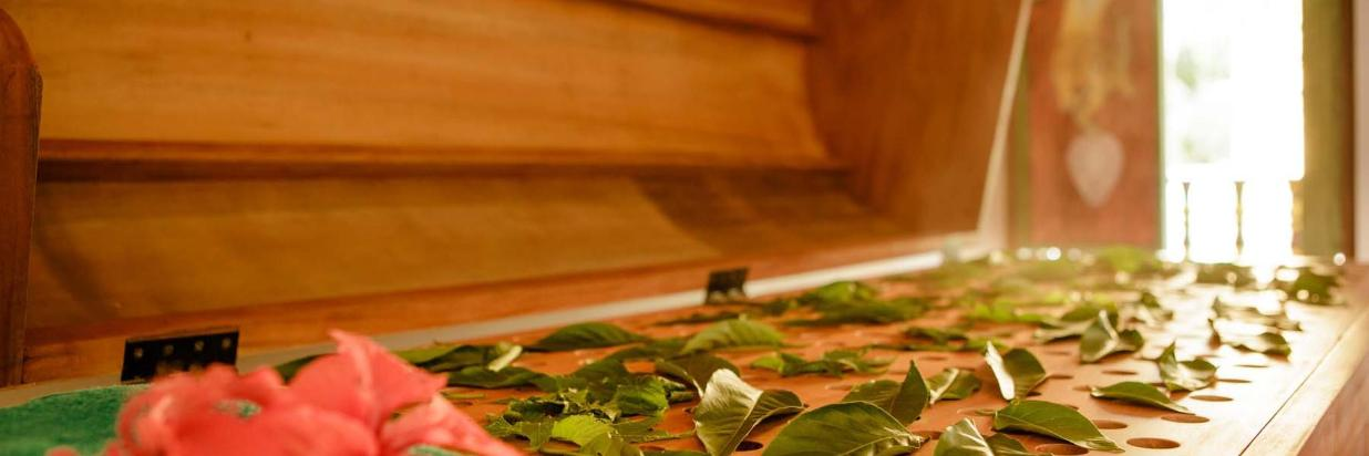 Thaulle-Resort-Sri-Lanka-Ayurveda-Cure-Steam-Bath.jpg