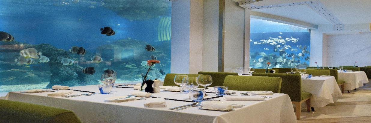 餐饮优选 - 海蓝海底餐厅