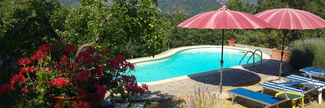 Pacchetti soggiorno e Offerte speciali Amiata- B&B Borgo Tepolini