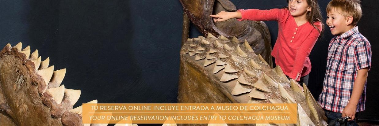 Museo de Colchagua banner.jpg