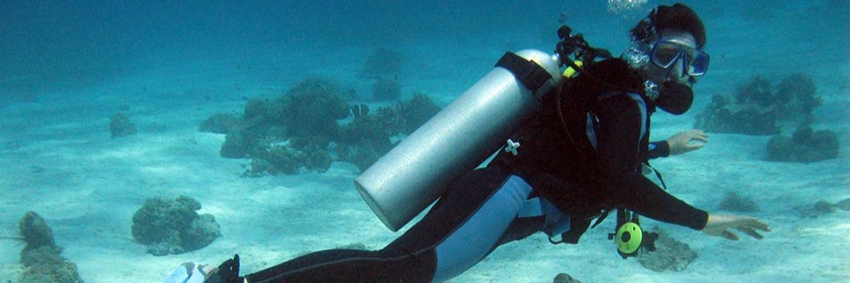 Diving 01.jpg