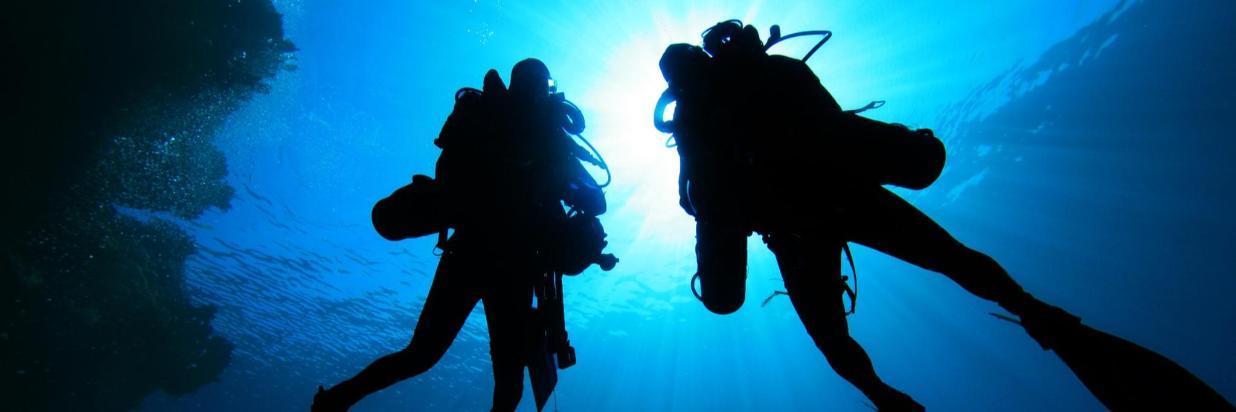 Diving 02.jpg