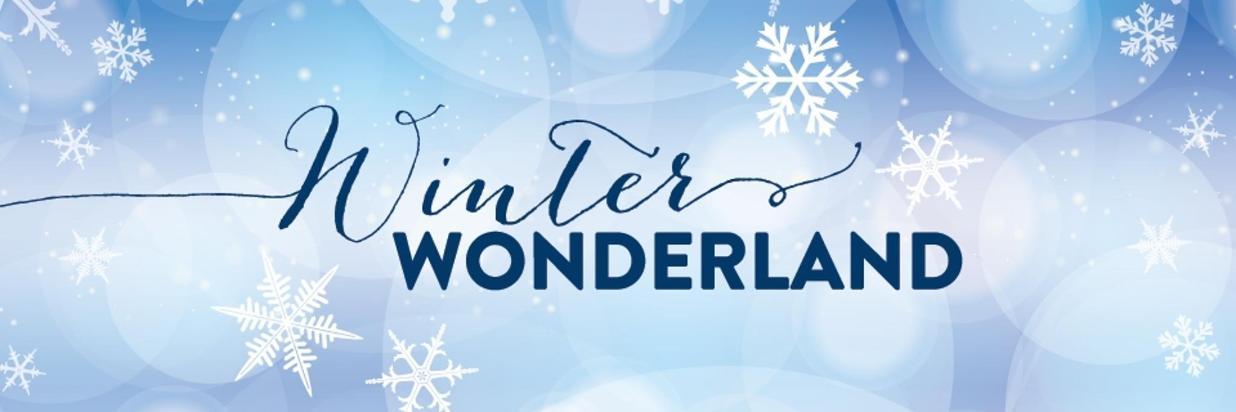 Winter Wonderland-Carousel-2016.jpg