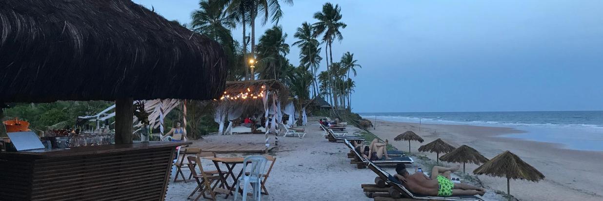 2018 Beach bar.jpg