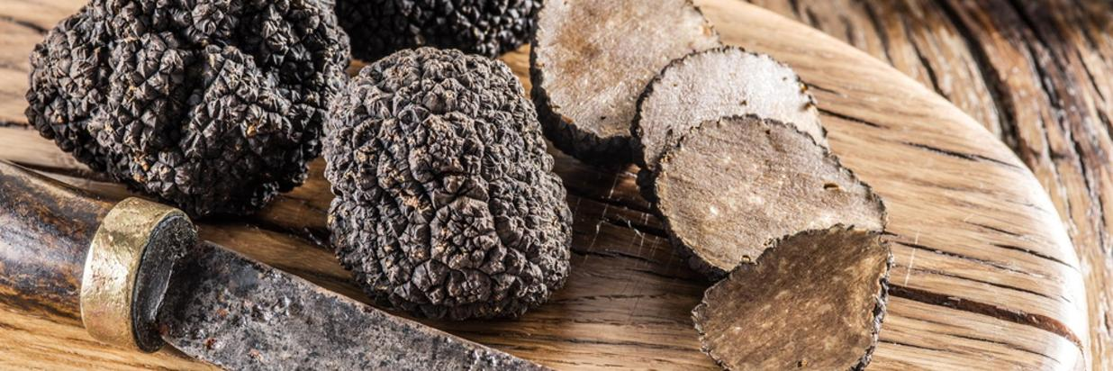types-of-truffle-mushrooms.jpg