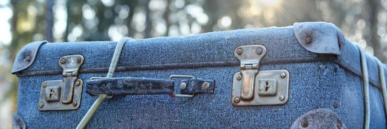 luggage-2020548__480 (1).jpg