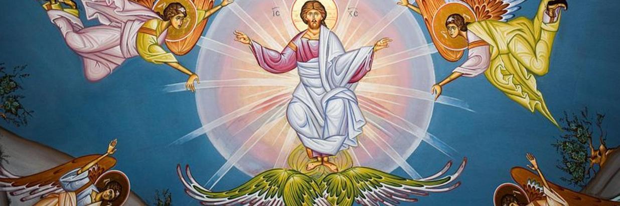 ascension-of-christ-1990556__480.jpg