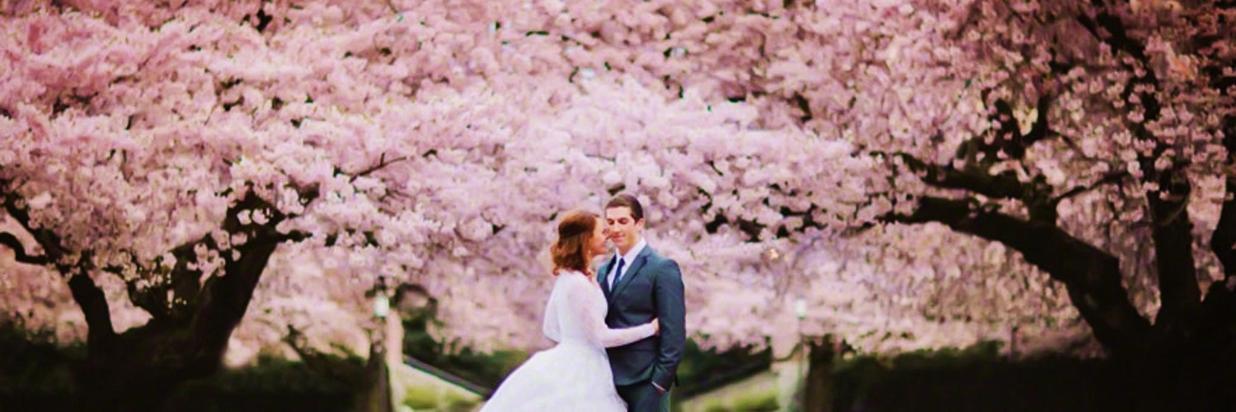 The-Cherry-Blossom-Wedding-Theme.jpg