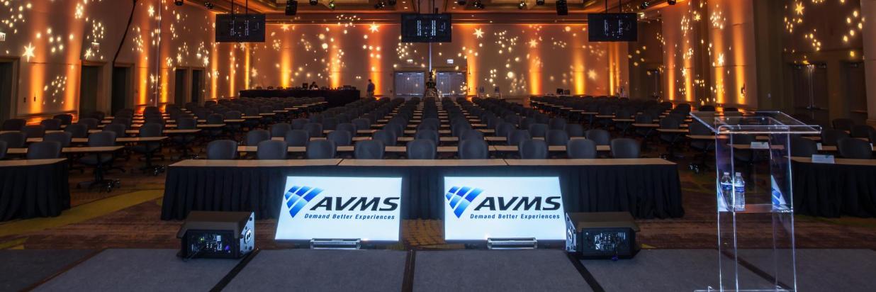 avms_lans-5 (2).jpg