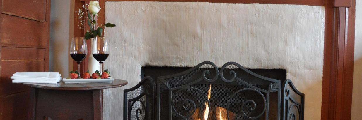 Closeup of Fireplace-tray promotions.jpg