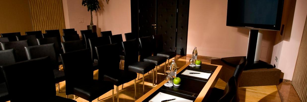 Meeting room Klub 1 with plazma.jpg