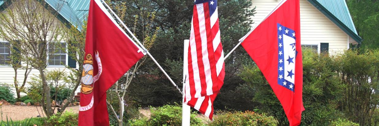 Salute to the Flags.JPG