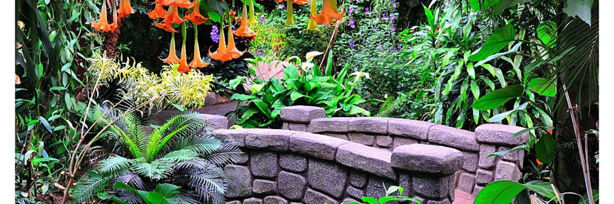 Butterfly Gardens 6.jpg