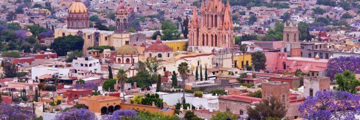 San Miguel morado.jpg