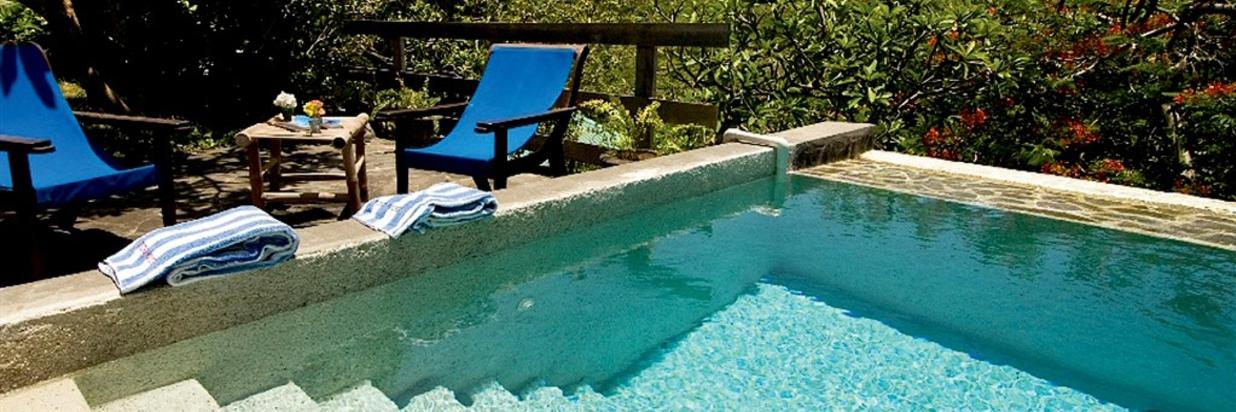 sugar reef_french house plunge pool.jpg