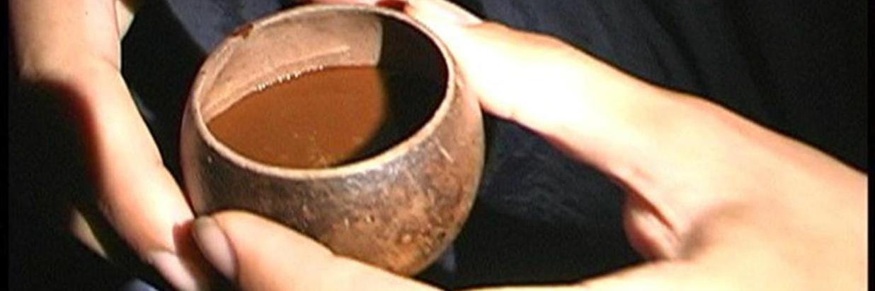 20170822040000_la-marea-con-ayahuasca.jpg