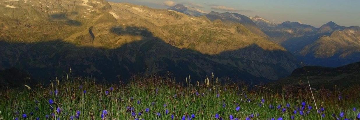 Arlscharte Blick ins Tal.jpg