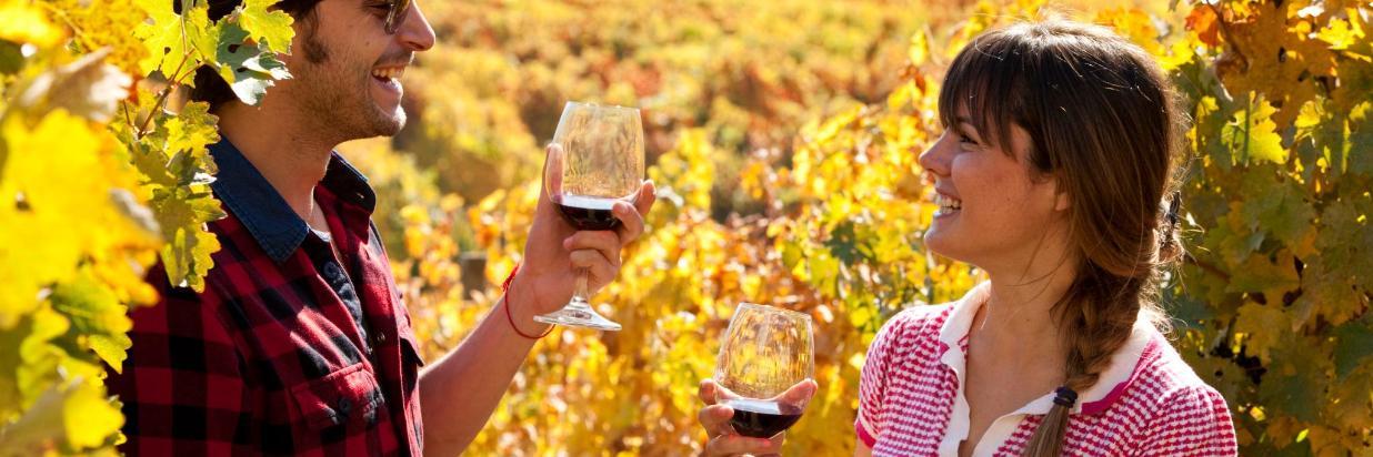 FW_Ruta del Vino_Valle de Colchagua4.jpg