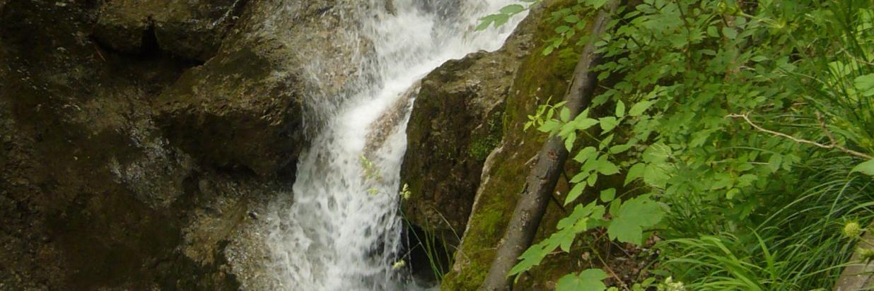Kleiner Wasserlauf.JPG