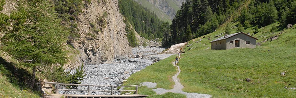 natur_landschaft_trupchun.jpg