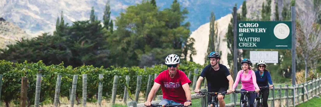 World Bicycle Day 2020 (1).png
