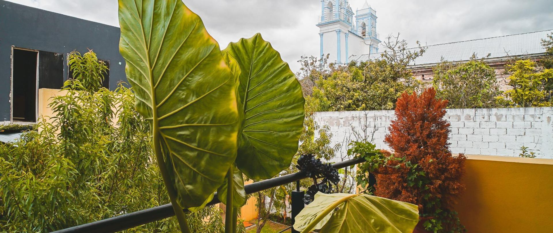 Jardín_Jardín de Luz (1).JPG
